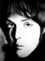 Sir Paul by splattedlotus