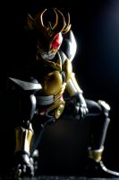 Agito's Rage by phtoygraphy