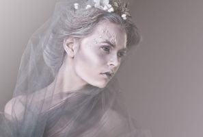 Winters Bride by Bonasira