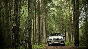 BMW X6 .1 by larsen