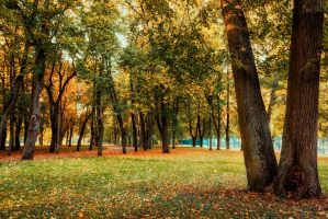 Autumn Comes To Town 4 by MrFotkerman
