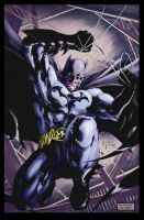 Butones' Batman colors by jkc by jkconlin
