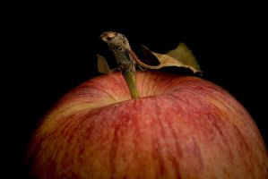 apple... by try-to-touch