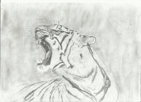 Roaring Tiger (Pencils) by AlbinoRichie