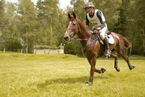 Stock - Wide Angle Full Speed Gallop 07 by LuDa-Stock