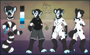 Atlas Anthro Ref by Spaggled