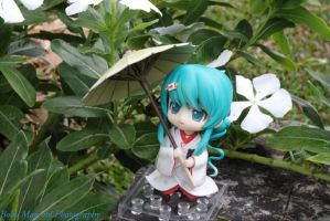 Miku and White flowers by BoboMagroto