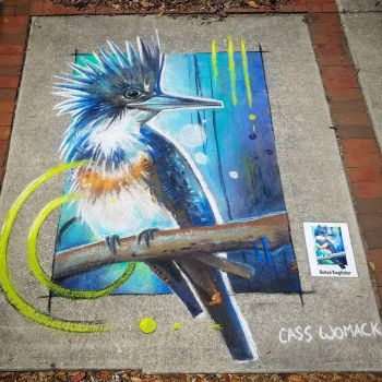 Belted Kingfisher Chalk art by charfade