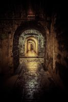 The tunnels of Fort Douamont 2 by DanielGliese