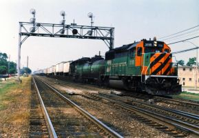 BN GP50s With BNFT 5 by eyepilot13