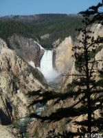YELLOWSTONE - LOWER FALLS by swtiine