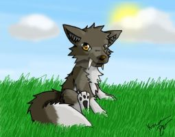 Wolfie by MismatchedConverse