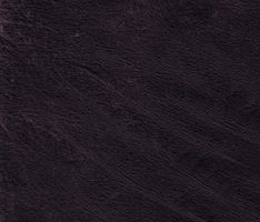 leather-1 by modulis-textures
