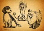 Dogs sketches by MarioOscarGabriele
