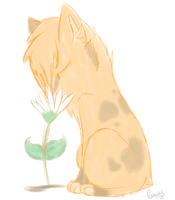 Smelling a flower-Rina by Valluwake