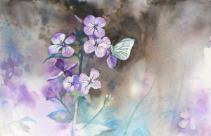 Butterfly by mashami