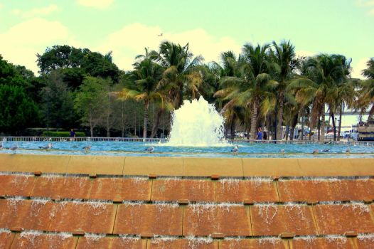 fountain in miami by let-me-be-yours