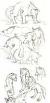 Wolf Sketches by evilitachi