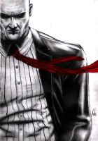 Hitman by RebellionAngel