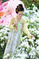 Native dress the Tang Dynasty by yosamabehere