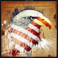 Land Of The Free by robertadelman