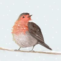 Winter Robin by in-the-margins