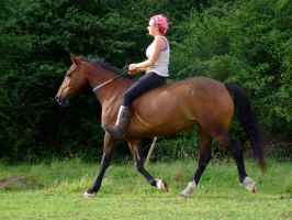 Freestyle Riding (Bareback and Bridleless) by StarCrossedPsycho
