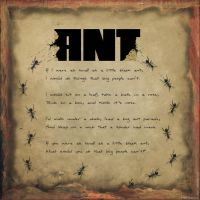 ANT by derfs