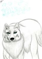 wolf by Darkdream-Vampire