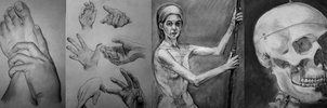 Misc Charcoal Exercises by MzzAzn