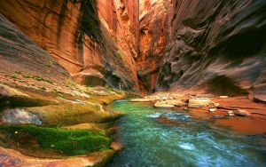 Canyon by Accesske
