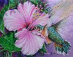 Flavor of hibiscus. by danuta50