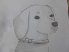 beagle drawing by EpicTwizzy