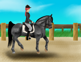 Freestyle Academy Dressage competition by Cesiel
