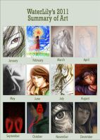 2011 Summary by WaterLily-1345