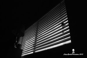 Noir Blinds by CZProductions