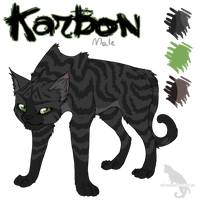 Karbon Character Sheet by Kocurzyca