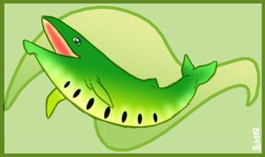 KIWI WHALE by macawnivore
