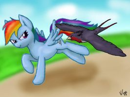 Dash takes off - Pony Pokemon Crossover by BrackenFox