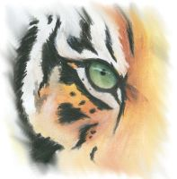 Tiger Eye- Watercolor test by lenzamoon