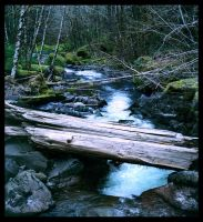 Thomas Creek by nocturnaljourney