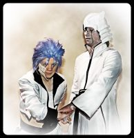 Grimmjow and Ulquiorra by surlycat