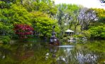 Hibiya Lake by Nature-And-Things