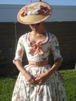 Chintz Gown Upgraded by Lady-Lovelace