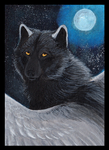 ACEO ZulayaWolf: Moon Queen by LabradoriteWolf