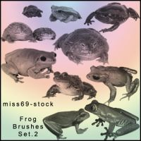 Frog Brushes Set.2 by miss69-stock