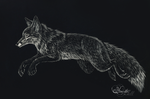 Fox - scratchboard by hecatehell