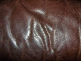 Brown Leather 02..... by Shadukha-Stock