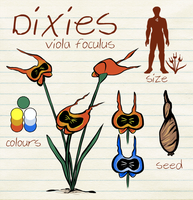 Espial World | Discovery | Dixies by Thalateya