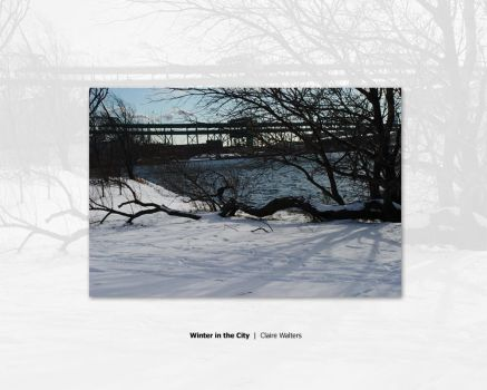 Winter in The City by ctw